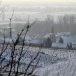 F67.Le village de Wolxheim en hiver/Wolxheim in winter