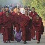 NŽépal,Lumbini,Siddharthanagar,femmes moines bouddhistes en pŽlŽr