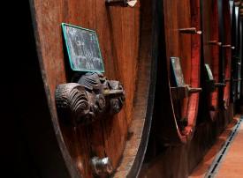 DSC_8611vignes&vin