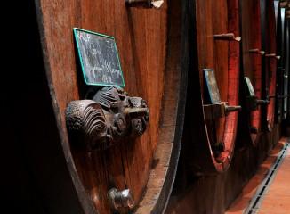Vignes, vin