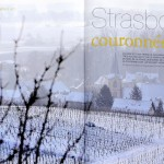 magazine _Terre de Vins_ 1