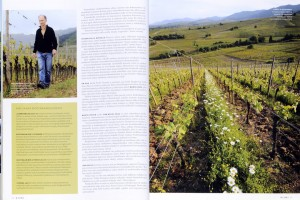 magazine danois _VIINI_ 2