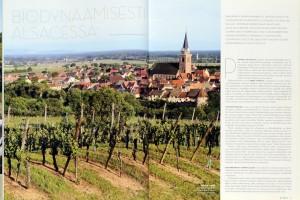 magazine danois _VINNI_ 3